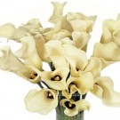 Cream Mini Calla Lilies