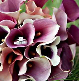 Calla Lily Weddings